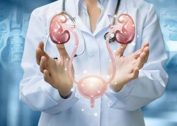 Акция «Консультация уролога + УЗИ мочевого пузыря и почек = скидка 30%»